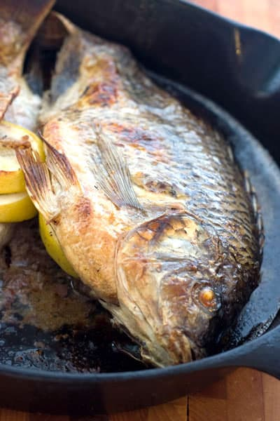 Whole Broiled Tilapia Recipe by EclecticRecipes.com #recipe