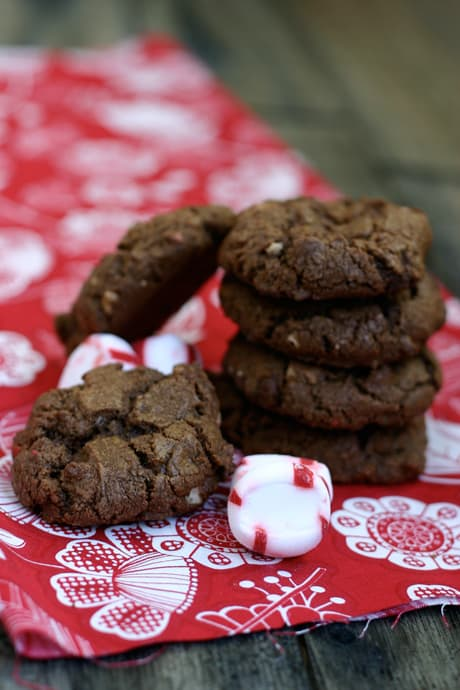 Eclectic Recipes » Chocolate Peppermint Cookies