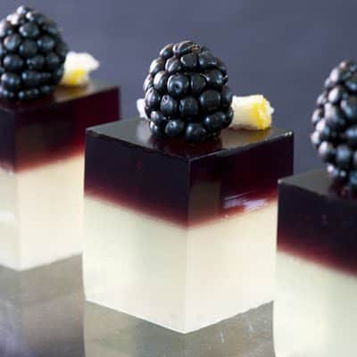 10 Amazing Shots from Jello Shot Test Kitchen by EclecticRecipes.com #recipe