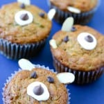 Apple Bear Muffins @EclecticEveryday
