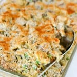 Turkey Tetrazzini 1