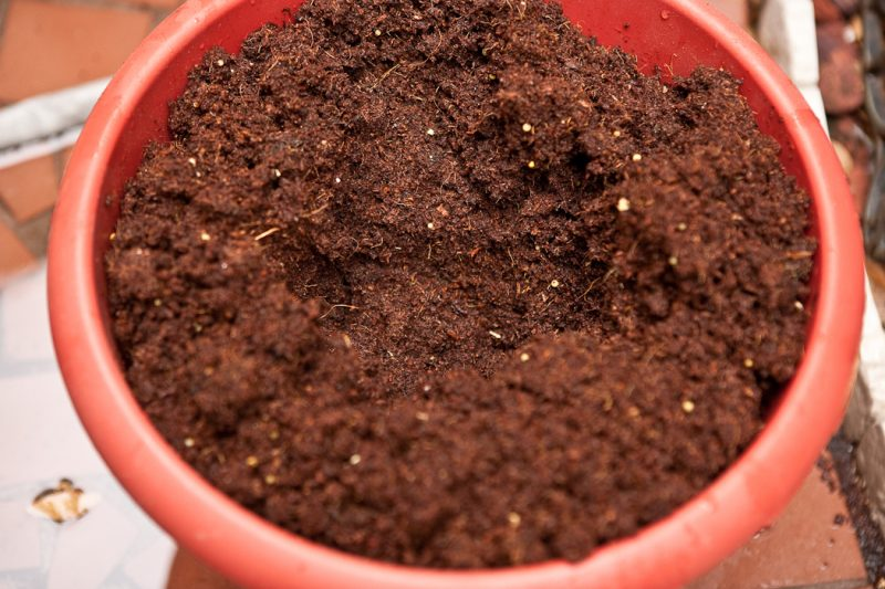 soil with water