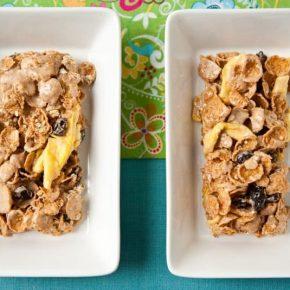 Apple-Cinnamon Oatmeal Crisp® Cereal Bars