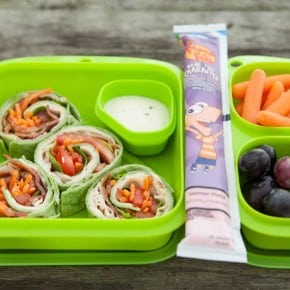Lunch Box Ideas and Yopliat GoGurt 3
