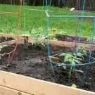Raised Bed Vegetable Garden @EclecticEveryday