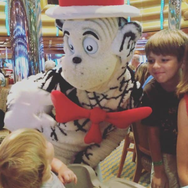 picture of cat in the hat