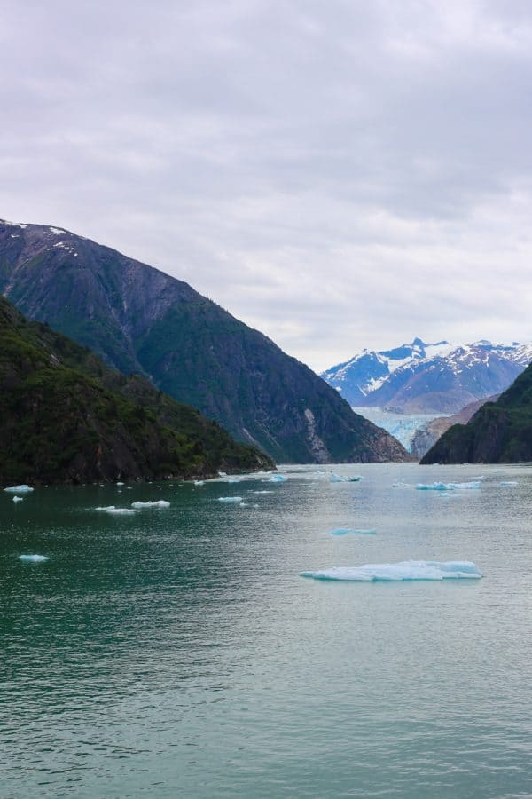 picture of glacier and icebergs