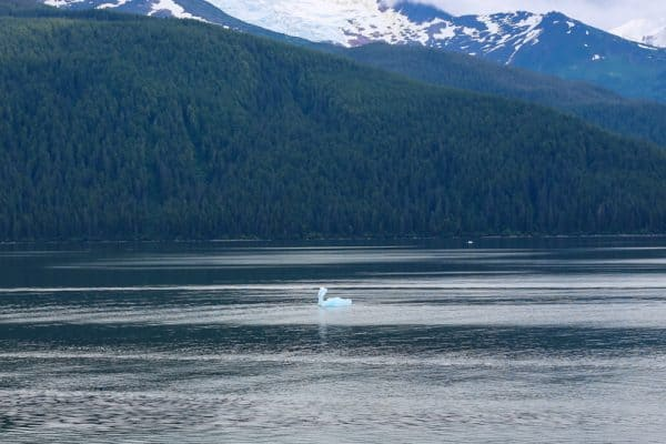 7 Day Alaska Cruise with Carnival - Part I Recipe
