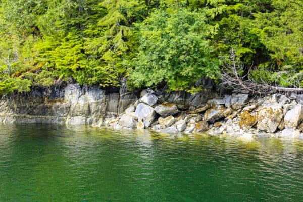 picture of green water and rocky cliff
