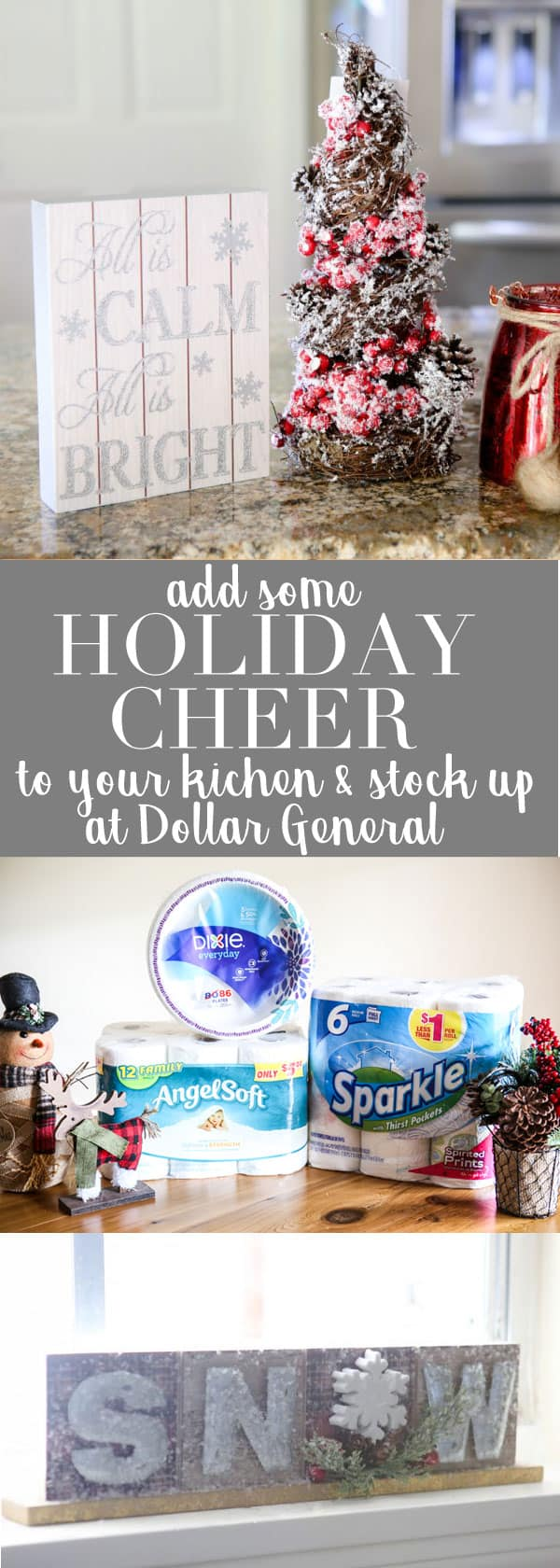 holiday decor and dollar general banner