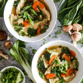 Potsticker Chicken & Vegetable Soup by Eclectic Recipes