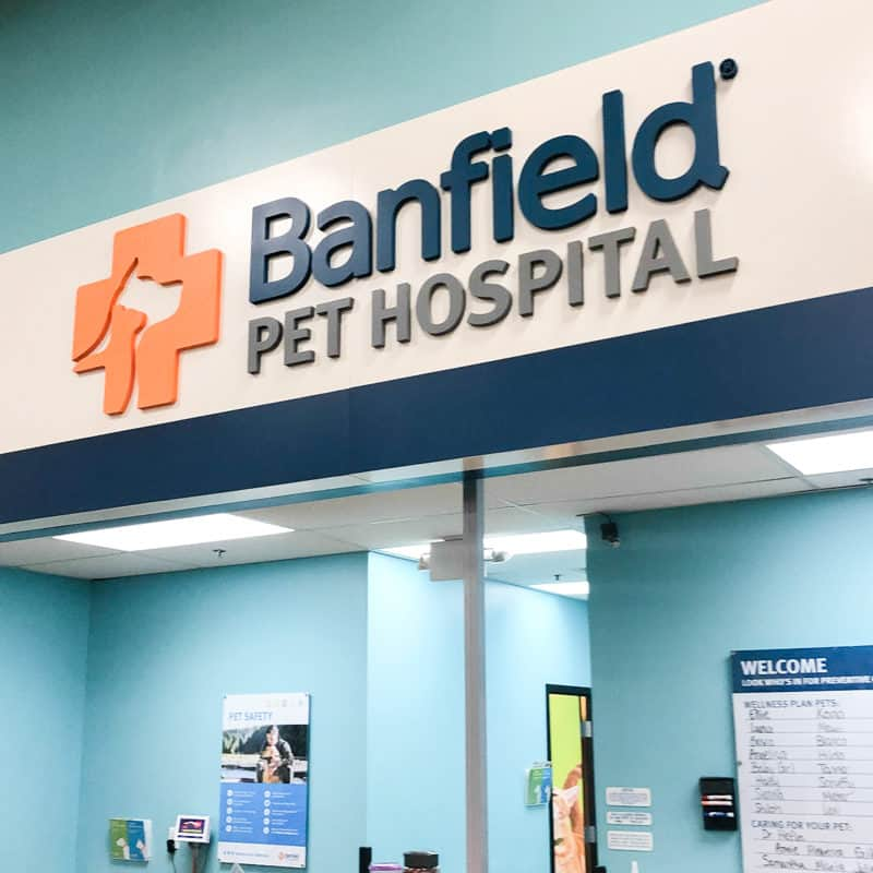 petsmart pet hospital